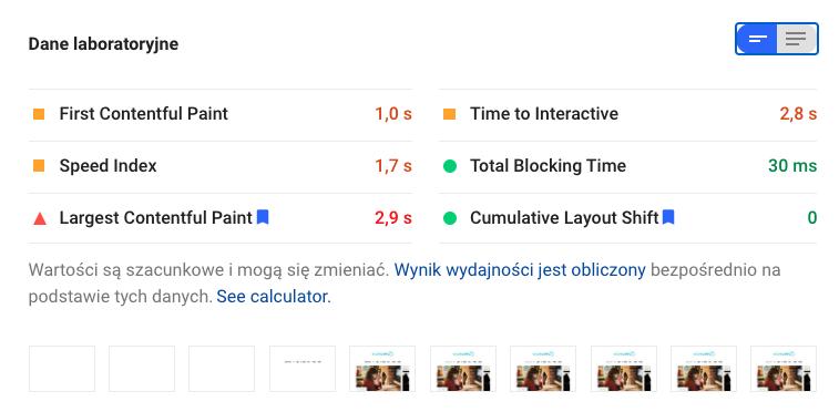 Page Speed Insights od Google